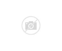 上海市松江区新浜学校 的图像结果