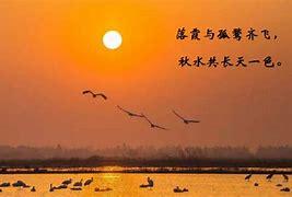 大江东去 的图像结果