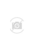 清原县网络营销 的图像结果