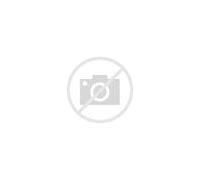 紫外成像仪 的图像结果