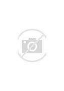 黟县新闻网 的图像结果
