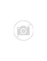 四川省嘉辉食品有限公司 的图像结果