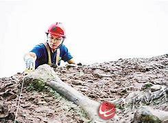 安乡县新闻网 的图像结果