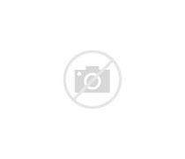 哈尔滨市第六中学 的图像结果