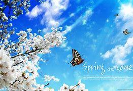 春天医美 的图像结果