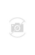 沙洋县新闻网 的图像结果