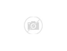 梁河县新闻网 的图像结果