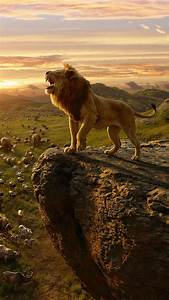 Simba, In, The, Lion, King, 4k, Wallpapers