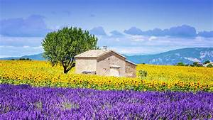 Provence, France, Wallpapers, -, Top, Free, Provence, France, Backgrounds