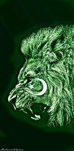 Pakistan, Flag, Iphone, Wallpapers