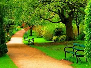 Green, Park, Trees, Nature, Beautiful, Day, Hd, Wallpaper, 1871, Wallpapers13, Com
