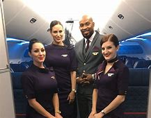 Be A Flight Attendant Download
