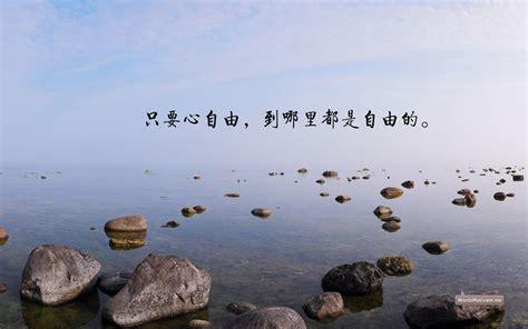 seo中国网4581